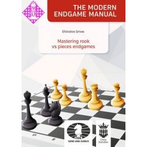 Mastering rook vs pieces endgames