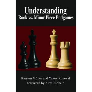 Understanding Rook vs Minor Pieces Endgames