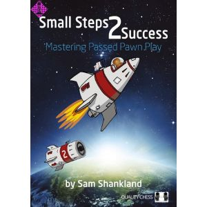 Small Steps 2 Success