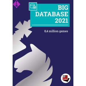 Big Database 2021