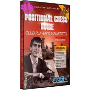 Positional Chess Guide