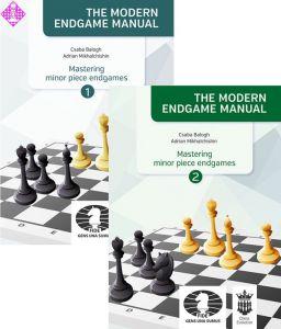 Mastering minor piece endgames 1+2