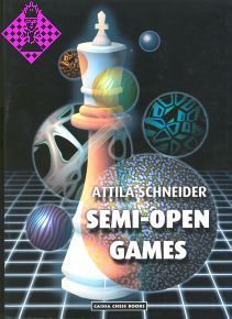 Semi-Open Games